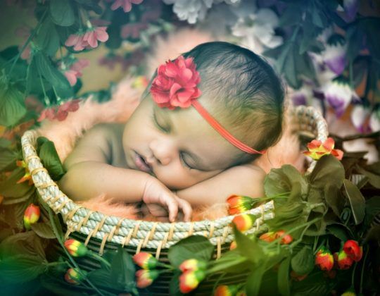 Shashiclicks/Shashi Patel/Ishu Patel/Neelam/Newborn/Infant/Kids